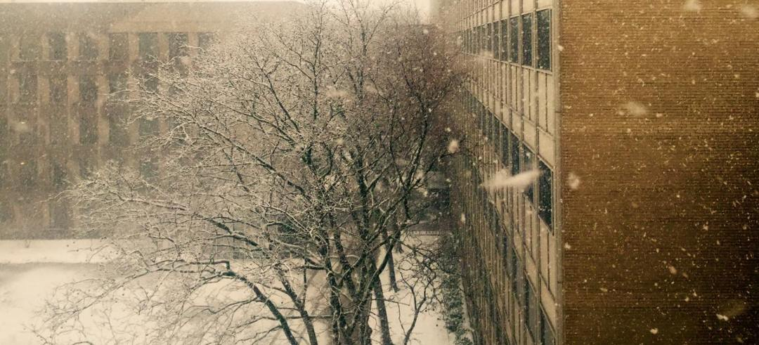 160206 The Snow (MIT)
